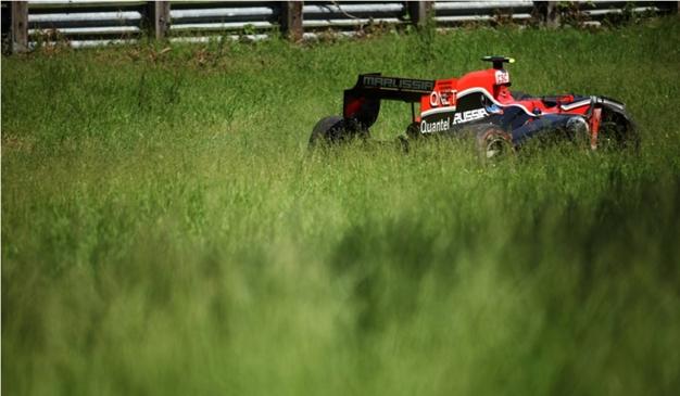 Virgin en la hierba