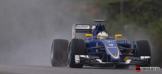 Marcus Ericsson, Sauber, GP Malasia 2015