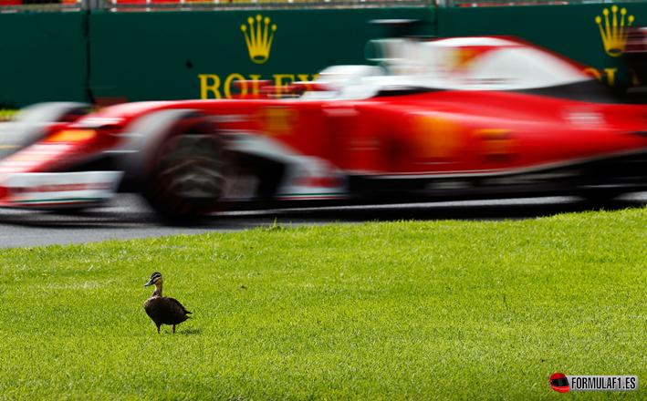 Vettel. Calificación GP de Australia 2016